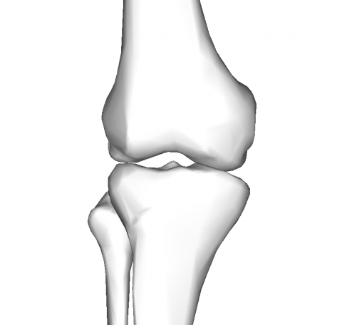 knee3
