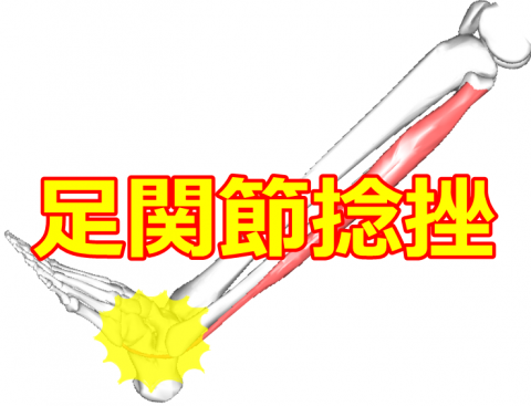 image (19)1