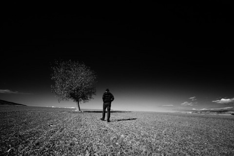 landscape-753072_640