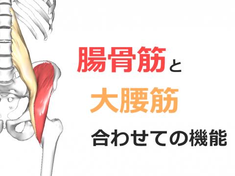 image (8) - コピー
