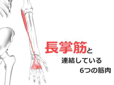 ダウンロード (49) - コピー