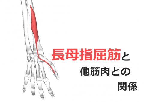 ダウンロード (40) - コピー